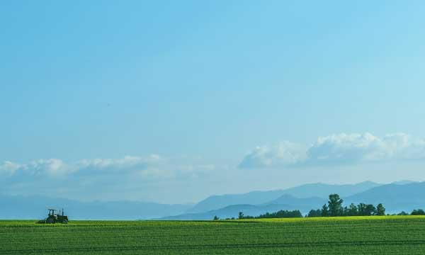 豊かな自然が織りなす海と山の食材 北海道